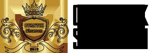 Ramis-logo-TEXT-stroke